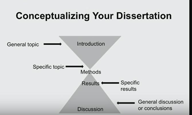 Discussion Sections